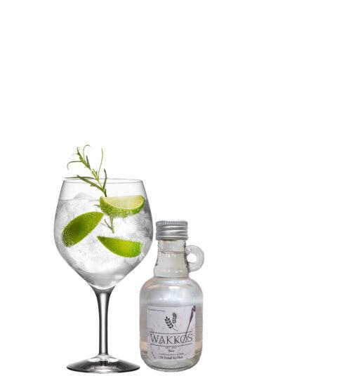 gin alcoholvrij kokos gent spirit klein